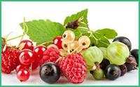权威抗癌食物清单发布!怎么吃防癌效果最好?